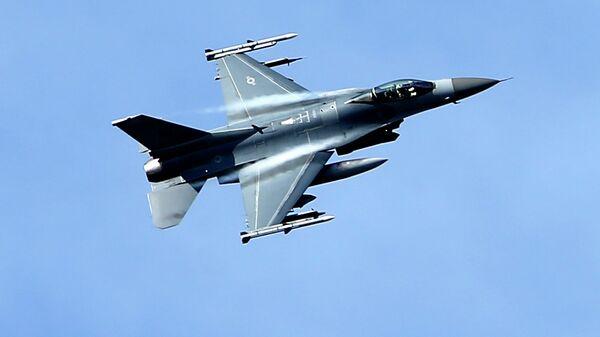 Caccia USA, NATO - Sputnik Italia