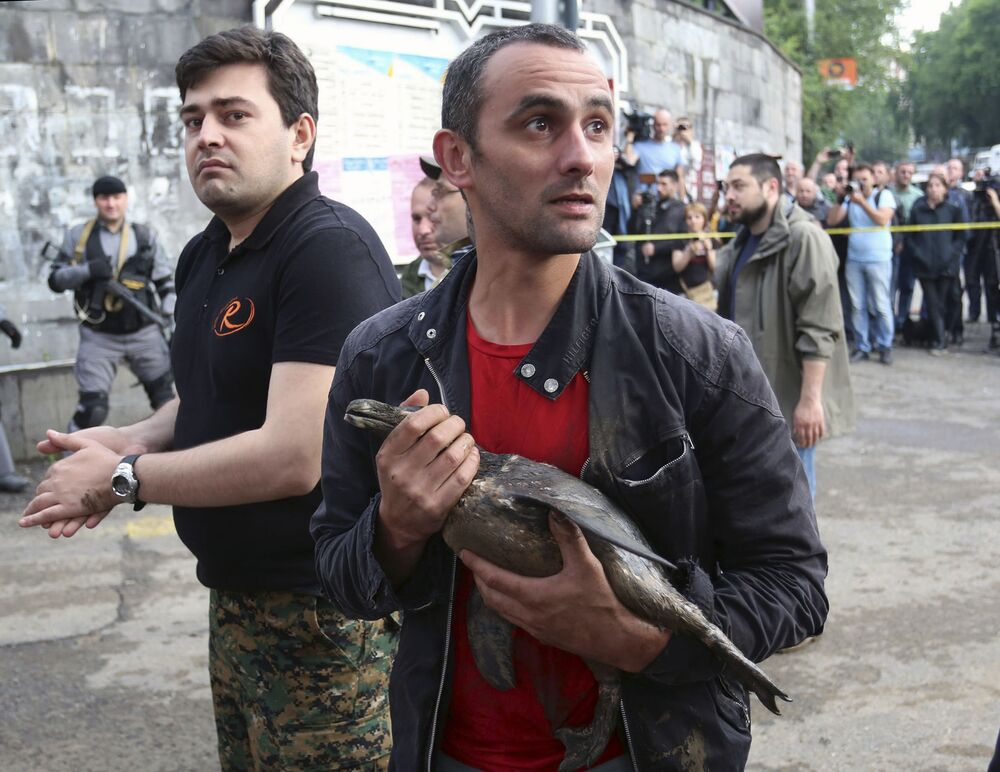 Un uomo salva un uccello dallo zoo inondato a Tbilisi.