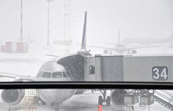 Le nevicate hanno disturbato il funzionamento degli aeroporti della capitale. - Sputnik Italia