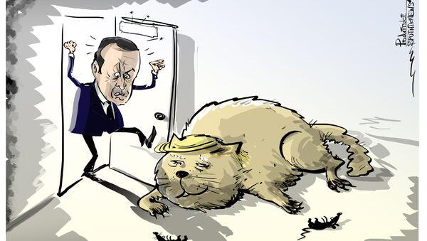 Erdogan accusa Washington di agire contro la Turchia, l'Iran e la Russia in Siria - Sputnik Italia