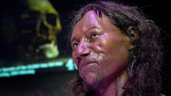 A full face reconstruction model made from the skull of a 10,000 year old man, known as 'Cheddar Man', Britain's oldest complete skeleton is pictured during a press preview at the National History Museum in London on February 6, 2018. - Sputnik Italia