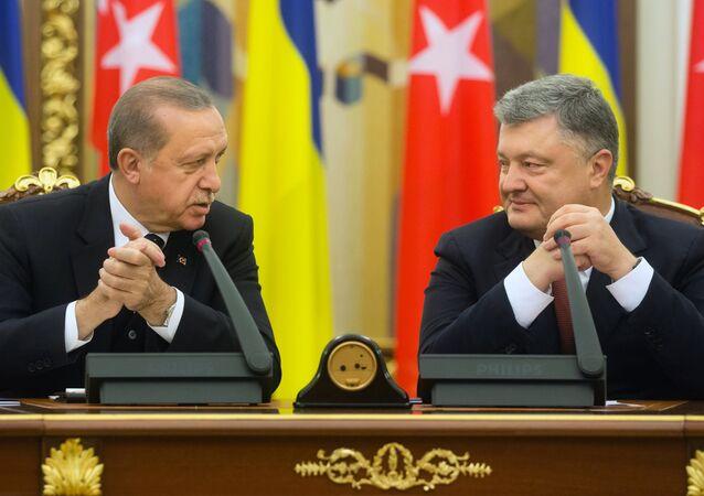 L'incontro tra Petro Poroshenko e Recep Tayyip Erdogan