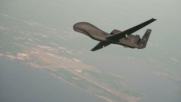 RQ-4 Global Hawk unmanned aerial vehicle conducts tests over Naval Air Station Patuxent River - Sputnik Italia