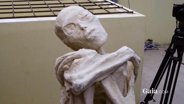 Mummia misteriosa - Sputnik Italia