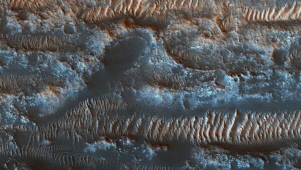 Le dune moventi nella zona Lobo Vallis sulla superficie di Marte. - Sputnik Italia