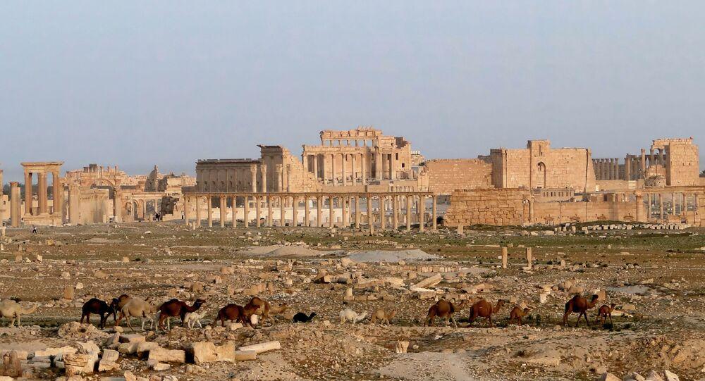 Palmira, Siria (foto d'archivio)