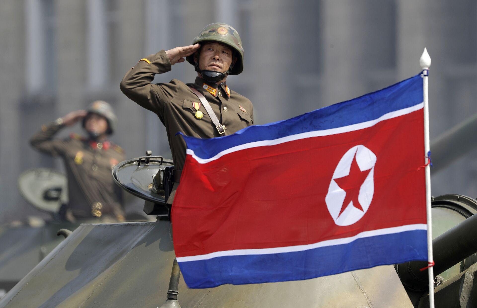 Un australiano confessa di aver violato le sanzioni ONU contro la Corea del Nord - Sputnik Italia, 1920, 10.02.2021