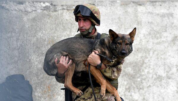 Manovre militari in Italia. - Sputnik Italia