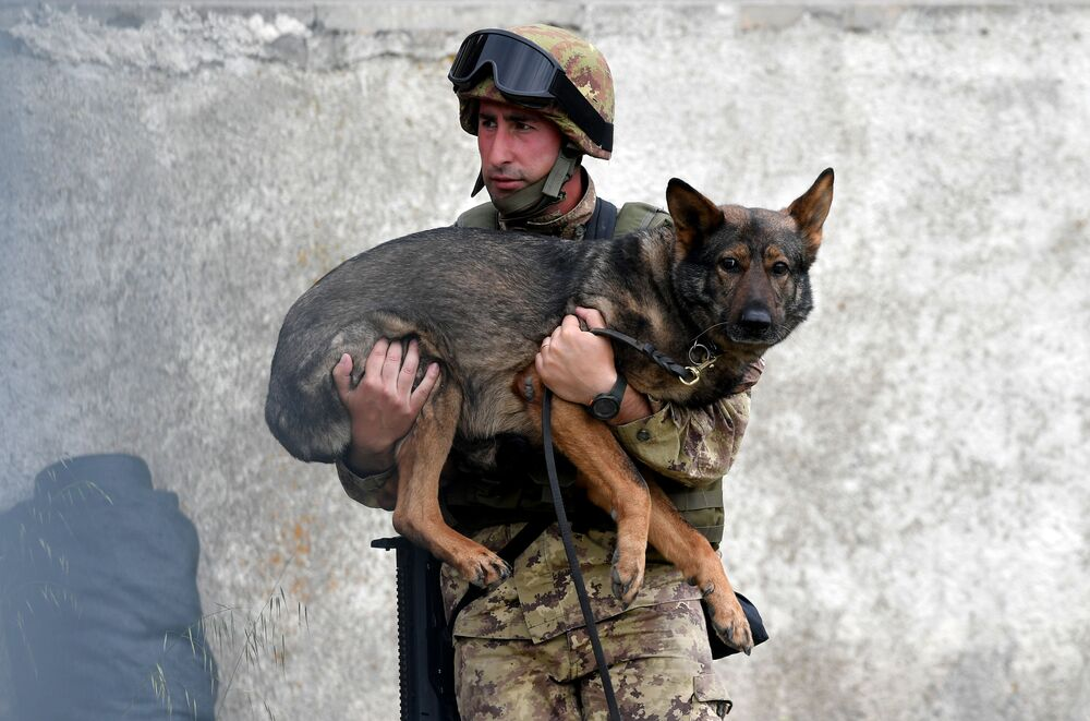 Manovre militari in Italia.