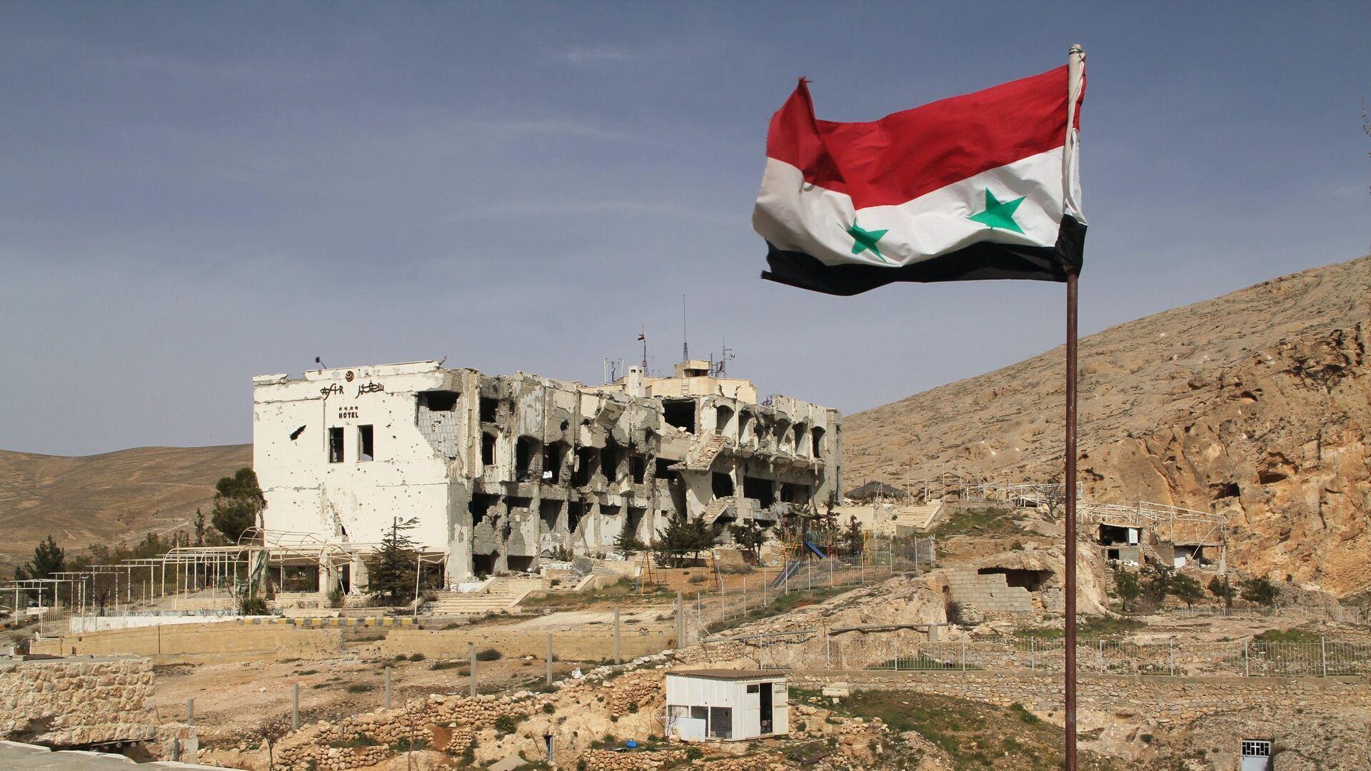 Bandiera della Siria - Sputnik Italia, 1920, 26.02.2021