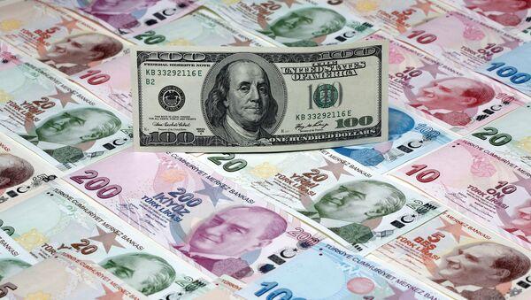Un dollaro sullo sfondo di un tappeto di lire turche - Sputnik Italia