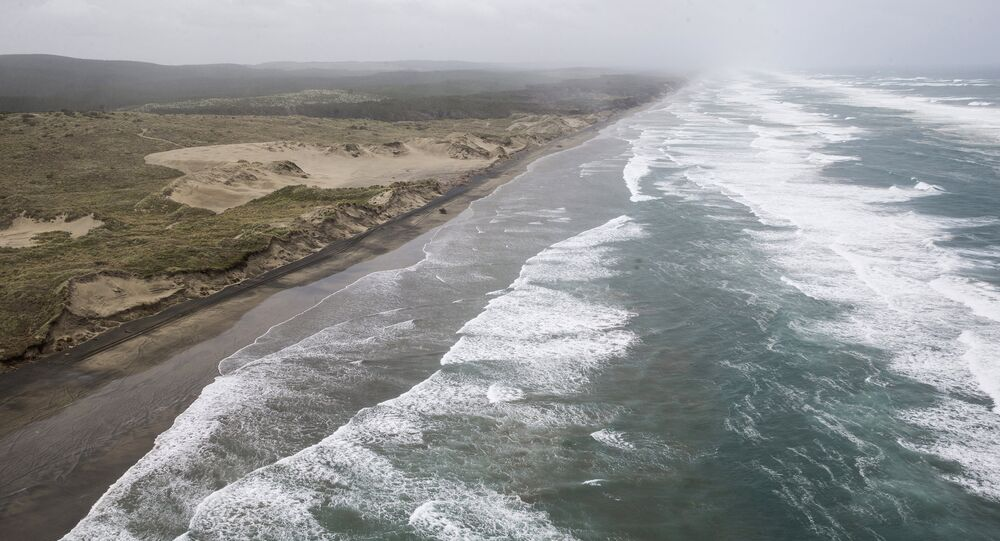 Muriwai beach is seen Sunday, Nov. 27, 2016 after the chartered fishing boat Francie disappeared off Auckland, New Zealand