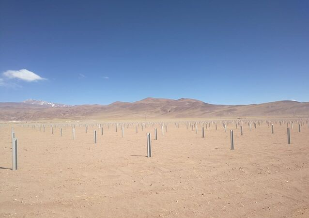 Puna argentina, Cauchari
