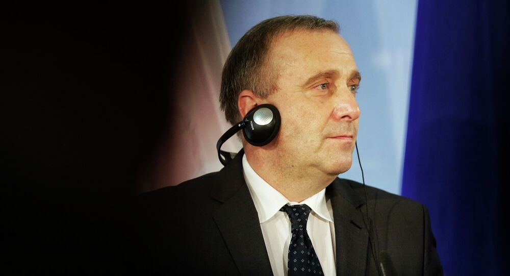 Ex ministro degli Esteri della Polonia Grzegorz Schetyna (foto d'archivio)
