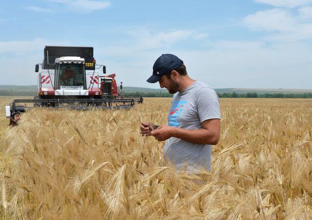 Agricoltura in Cecenia