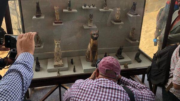 Le mummie di gatti - Sputnik Italia