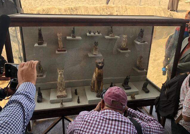 Le mummie di gatti