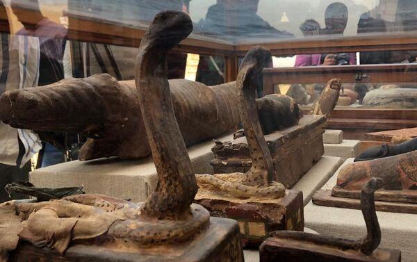 Le mummie di cobre - Sputnik Italia