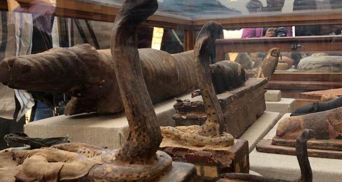 Le mummie di cobre