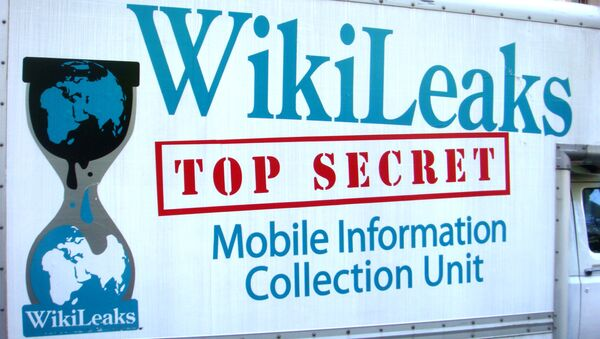 Логотип Wikileaks на фургоне автомобиля - Sputnik Italia