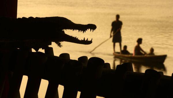 Uomini pescano vicino a un coccodrillo a Barra de Santiago, Salvador. - Sputnik Italia