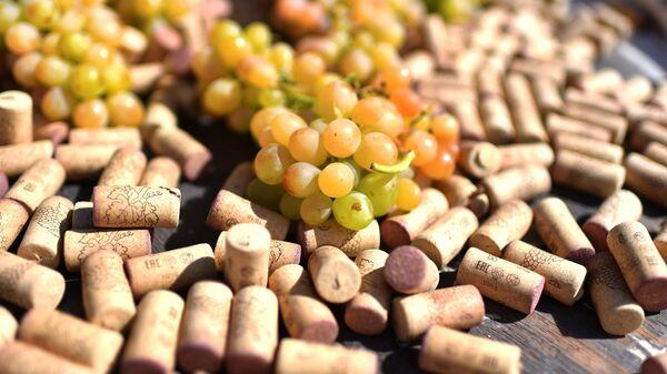Festival del vino giovane a Balaklava - Crimea - Sputnik Italia