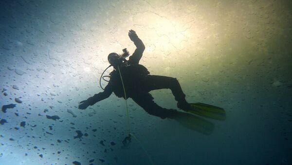 Diver - Sputnik Italia