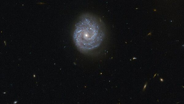 La galassia a spirale RX J1140.1 + 0307 - Sputnik Italia