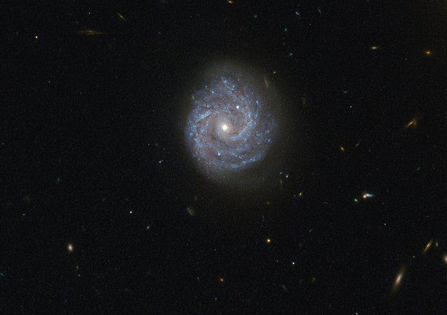 La galassia a spirale RX J1140.1 + 0307