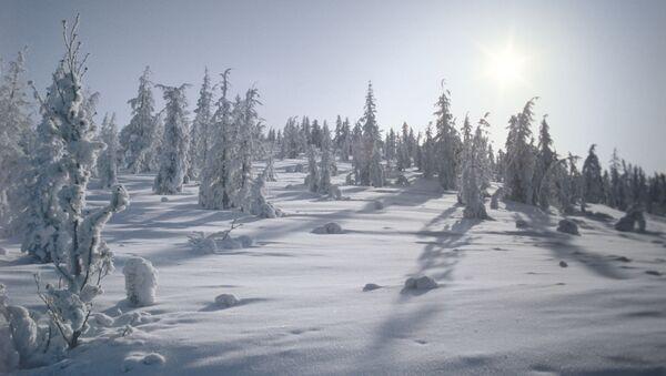 Inverno in Jacuzia - Sputnik Italia