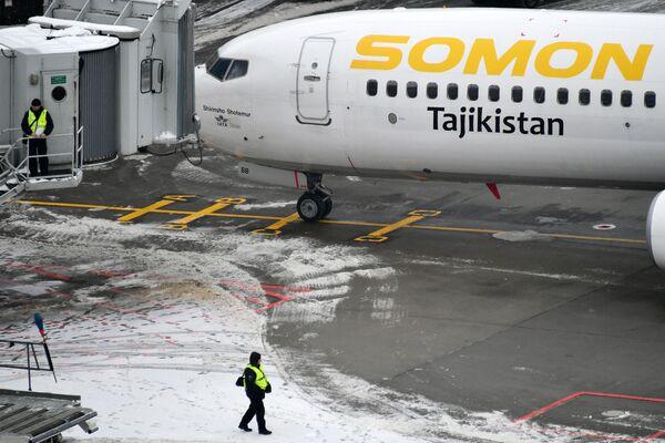 Un giorno all'aeroporto di Domodedovo - Sputnik Italia