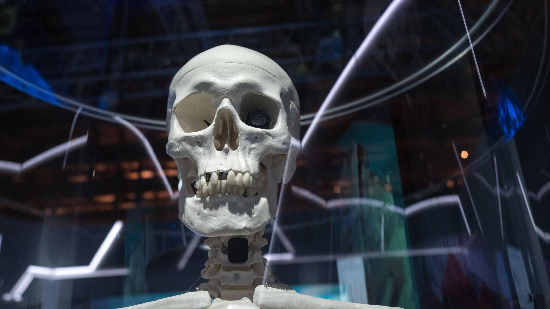 La rivoluzione della protesi? Le ossa create dalla stampante - Sputnik Italia, 1920, 13.07.2021