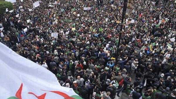 Proteste in Algeria - Sputnik Italia