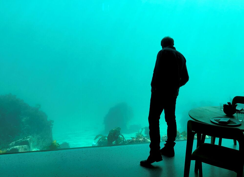 Dopo aver mangiato, al ristorante sottomarino Under, si può ammirare la vita sottomarina