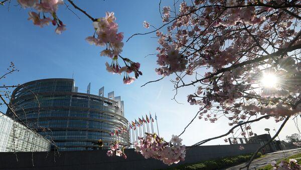 La sede del Parlamento europeo a Strasburgo - Sputnik Italia