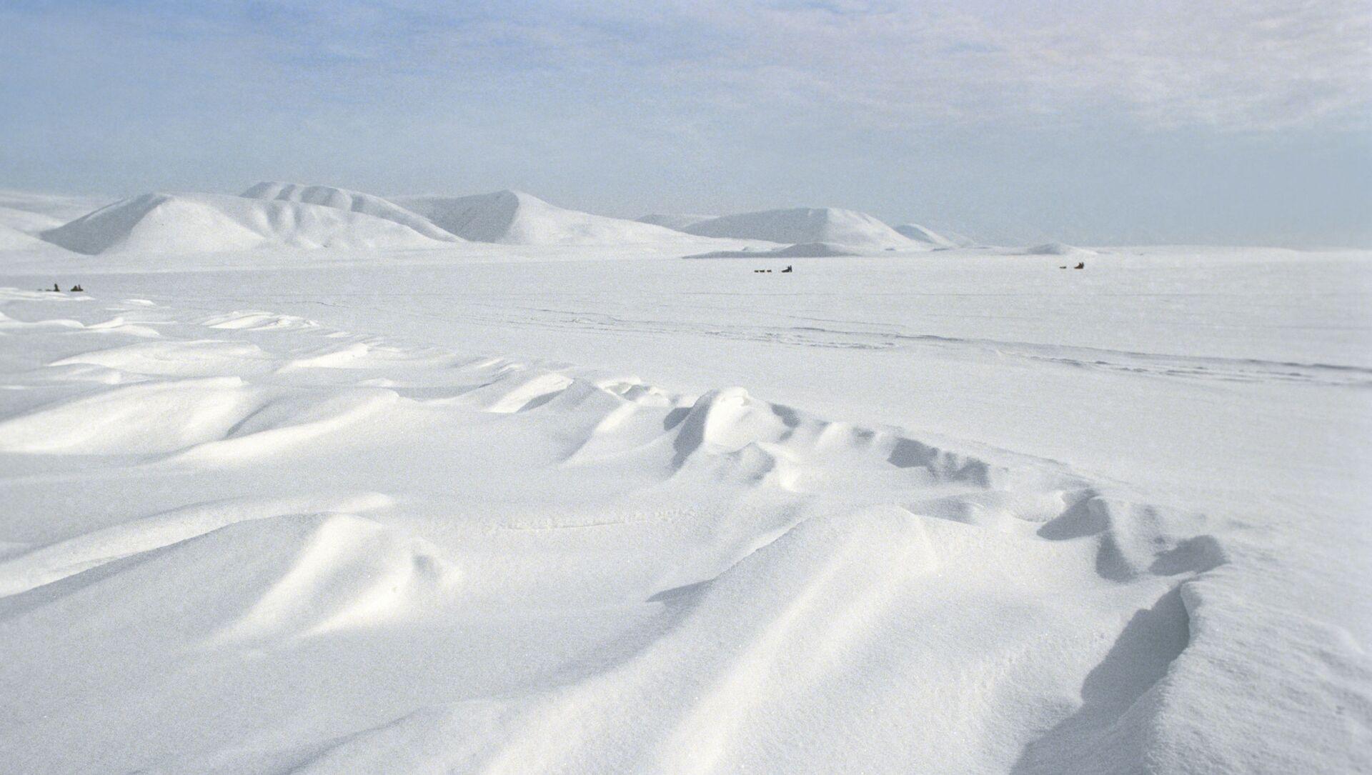 La spedizione congiunta del 1989 durò 2 mesi e percorse quasi 2mila km tra Chukotka e Alaska - Sputnik Italia, 1920, 14.04.2021