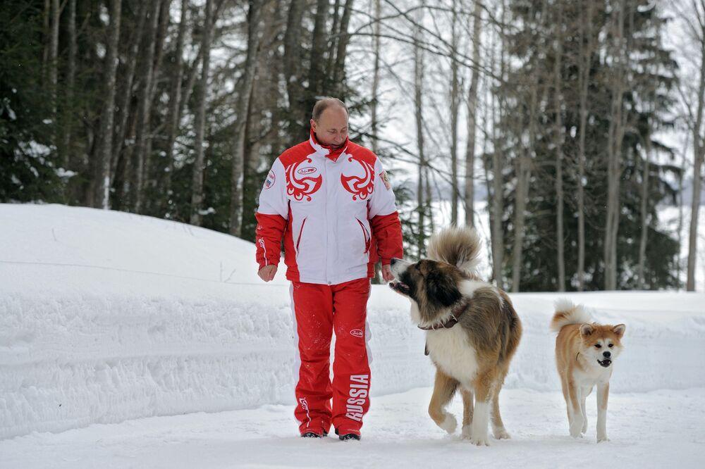 Il presidente russo Vladimir Putin con i suoi cani Buffy e Yume