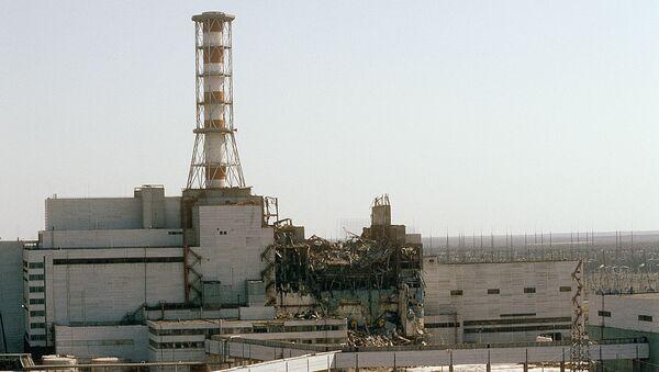 L'ex centrale nucleare di Chernobyl - Sputnik Italia