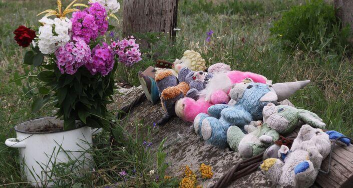 È passato un anno esatto dalla strage dell'aereo malese precipitato in Ucraina
