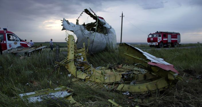 Il 17 luglio del 2014 il Boeing della Malaysian Airlines precipitò in Ucraina