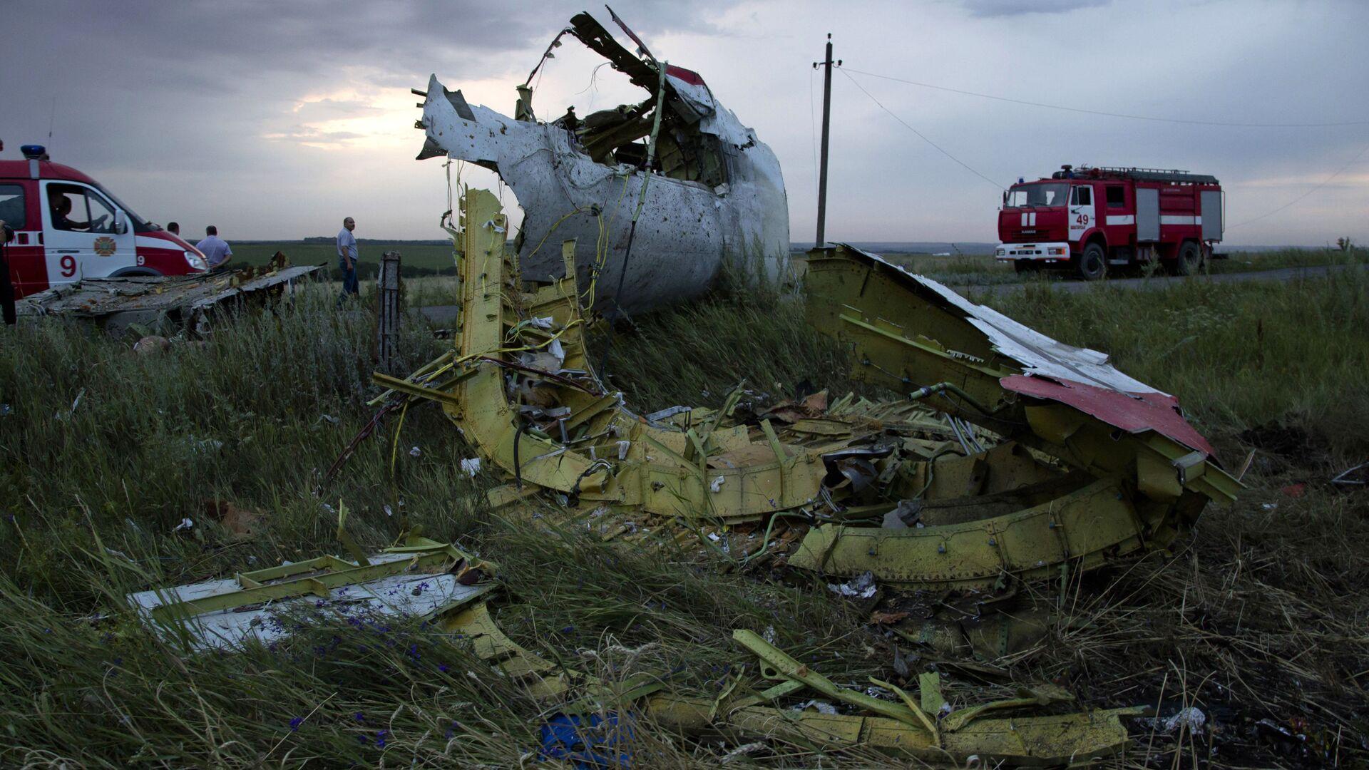 Il 17 luglio del 2014 il Boeing della Malaysian Airlines precipitò in Ucraina - Sputnik Italia, 1920, 06.09.2021