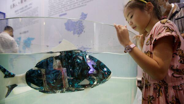 Pesce robot a un'esposizione a Pechino - Sputnik Italia