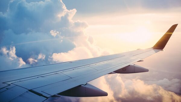 Vista dal finestrino di un aereo - Sputnik Italia