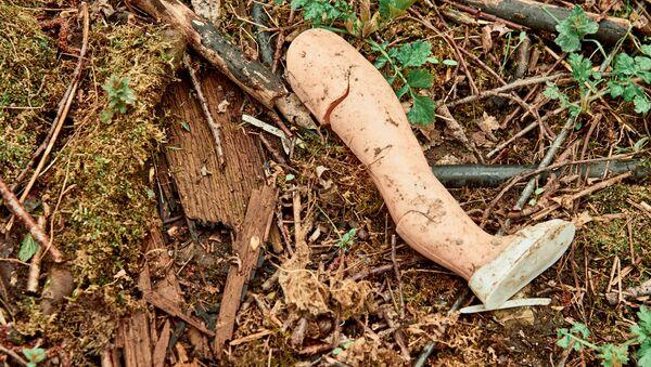 La gamba di una bambola nel bosco - Sputnik Italia