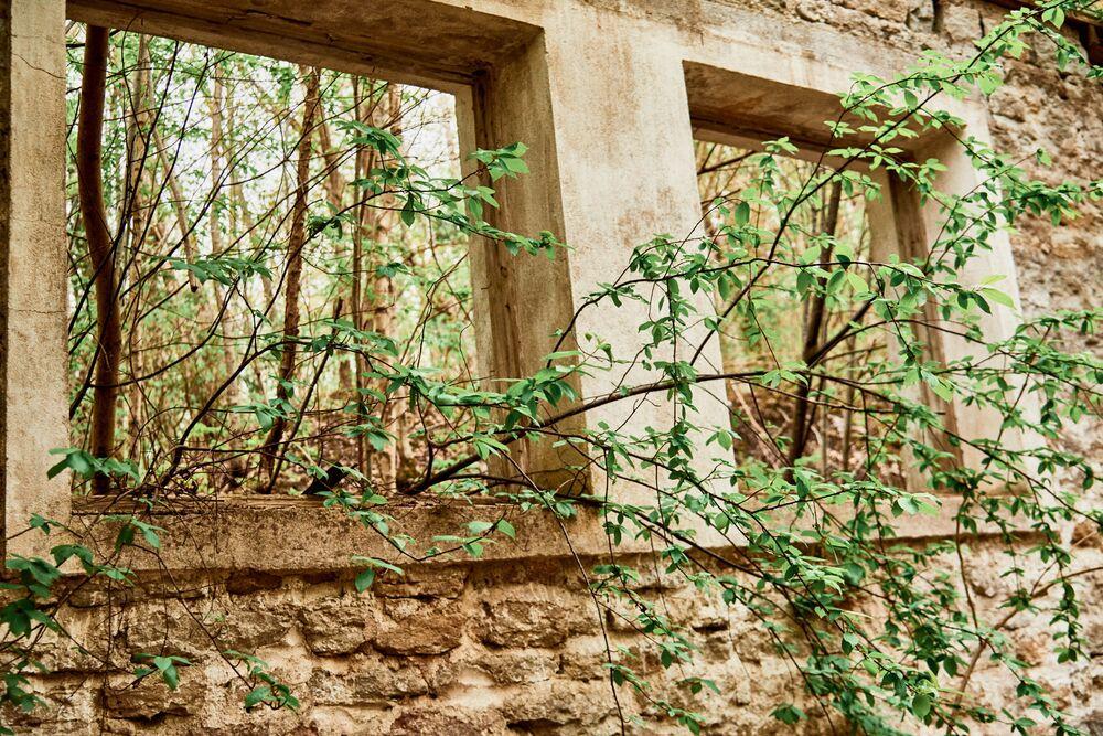 La vegetazione ha occupato gli spazi tra quello che resta delle mura degli antichi arsenali