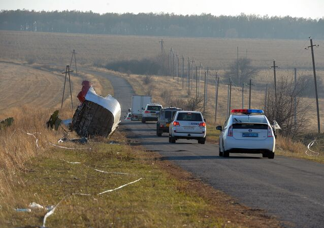 Luogo dello schianto del volo MH17