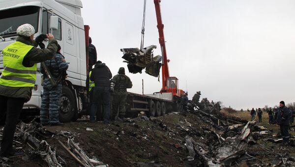 Il volo M17 partito da Amsterdam e diretto a Kuala Lumpur si è schiantato il 17 luglio 2014 nella zona orientale dell'Ucraina - Sputnik Italia