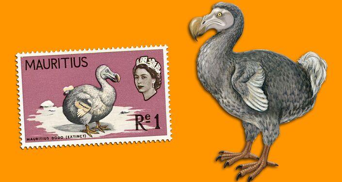 Dodo - Francobollo e illustrazione artistica