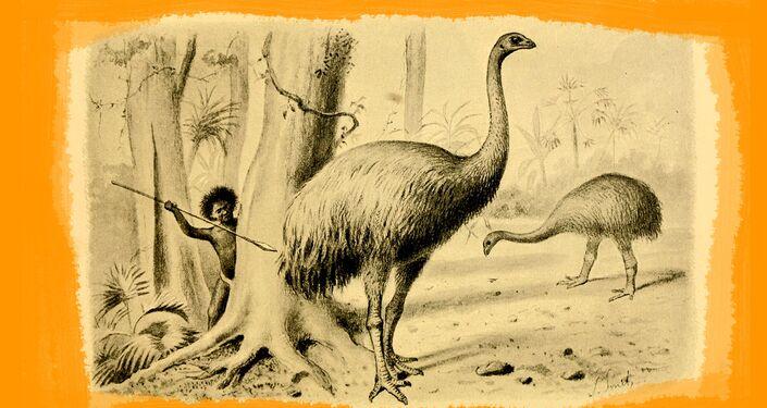 Caccia ai Moa - Illustrazione di Joseph Smit (1836-1929)