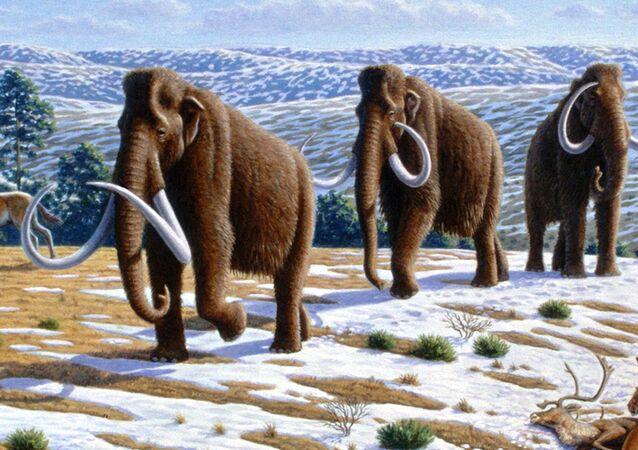 Mammut - rappresentazione artistica